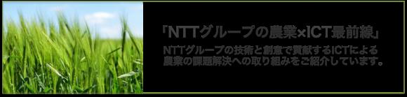 NTTグループの農業×ICT最前線