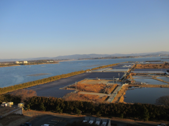 養鰻池に隣接する太陽光発電パネル
