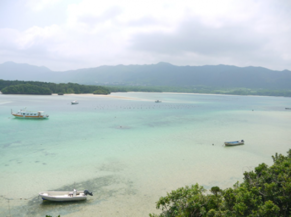 真珠の養殖場(石垣島)