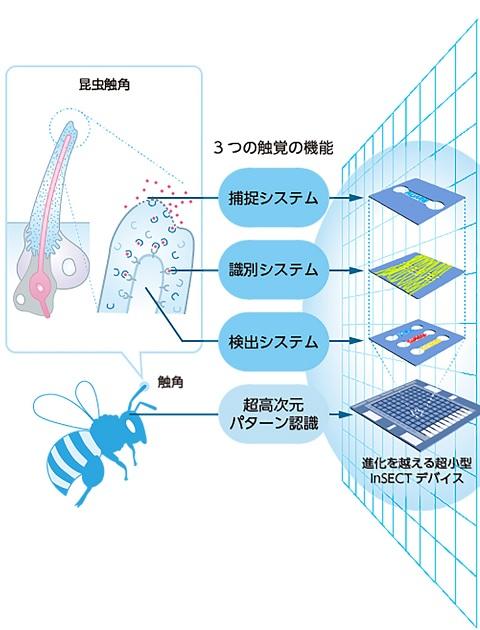 出所:革新的研究開発推進プログラム「ImPACT」の研究開発プログラム「進化を超える極微量物質の超迅速多項目センシングシステム」(宮田令子PM)の研究紹介ページより。