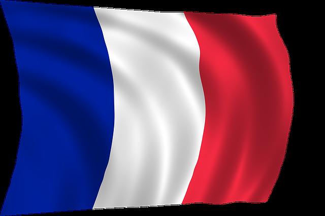 Free Mobileはフランス市場でどのように「競争」したか?