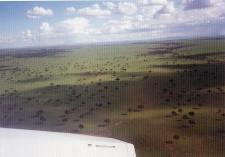 【写真2】上空から