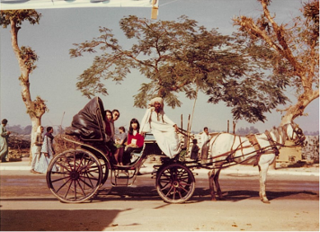 【写真10】馬車でルクソール市内観光