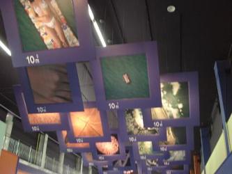 【写真6】東海村原子力科学館の展示